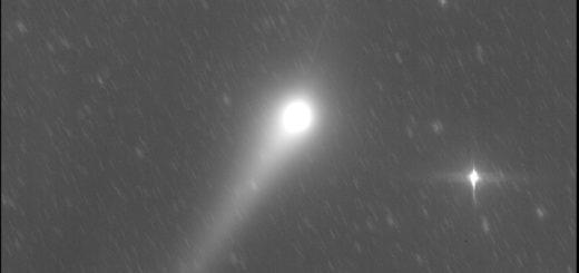 Cometa C/2015 V2 Johnson e la sua anticoda: 28 maggio 201